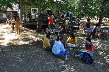 Slingshot Collective at the Apple Farm Commune, c. 2011.