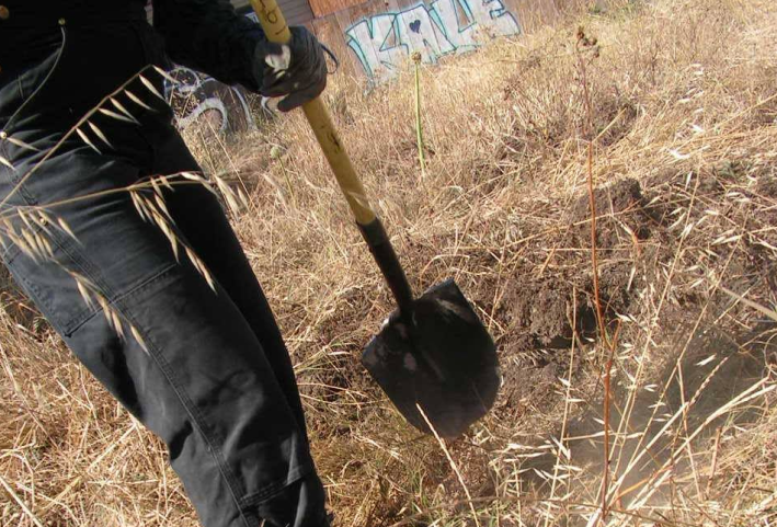 Working the land at a newly occupied farm in West Oakland, 2015. (photo by Samara Hayley Steele)